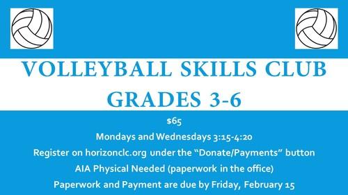 Volleyball Skills Club